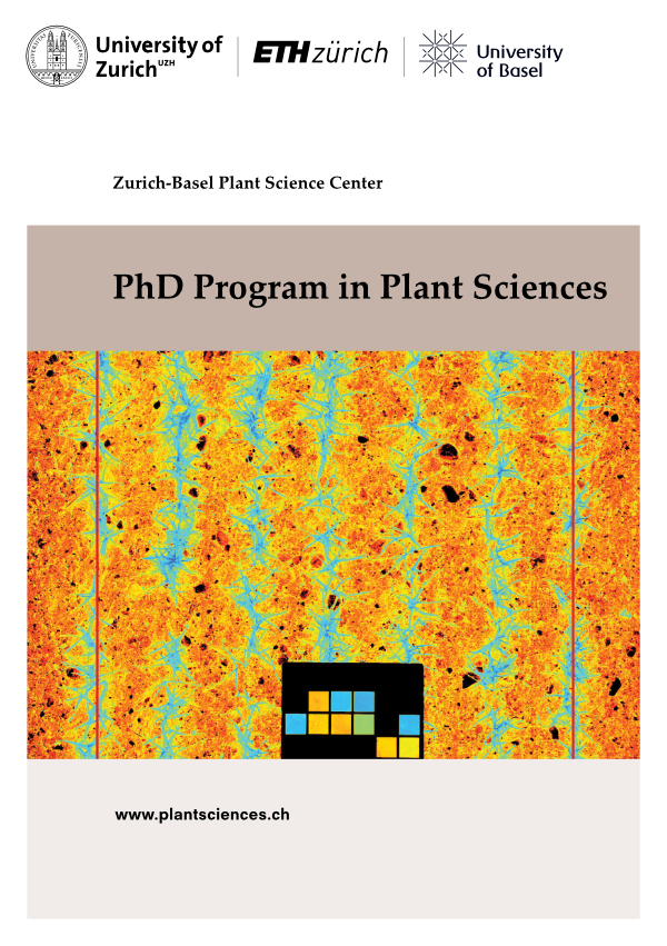 PSC PhD Program Flyer